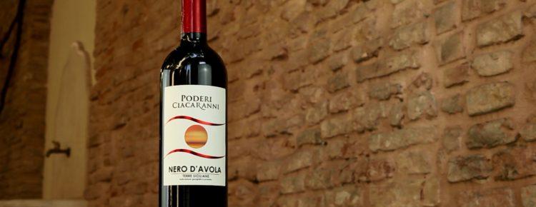 Eurospin e i suoi vini integralmente prodotti