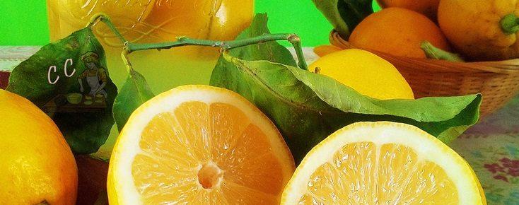 limoni sotto sale blog